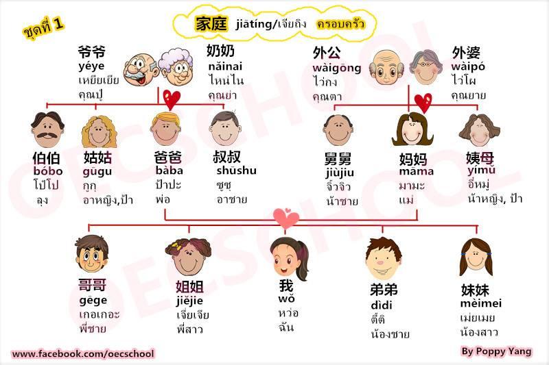 เรียนภาษาจีนออนไลน์ คำศัพท์ภาษาจีนกลาง หมวดครอบครัว