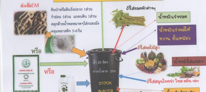 สูตรการทำน้ำหมักชีวภาพสำหรับพืชแบบง่ายๆ (How to Make Bio-Fermented Water)